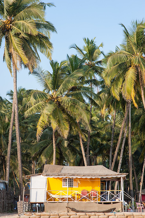 Hut between palms on the beach in Goa (India)
