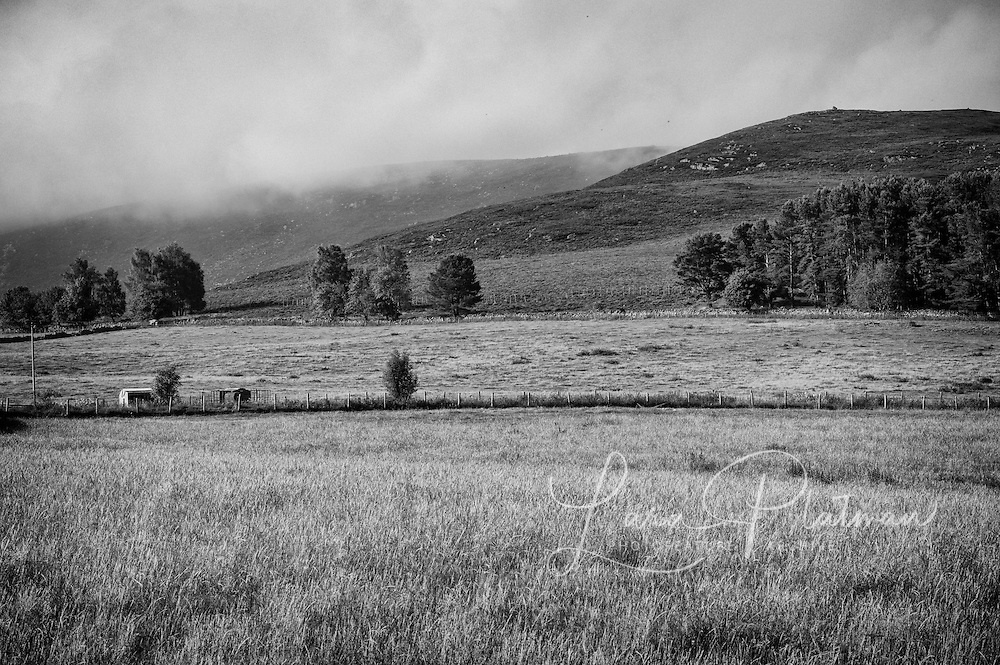 on road from Edradour to Royal Lochnagar