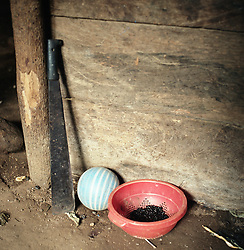 Machete, ball and a basket of black beans in the village Nuevo San Carlos.