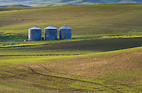 Grain silos, wheat fields in the Palouse region of the Inland Empire of Washington