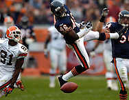 MORNING JOURNAL/DAVID RICHARD.Chicago safety Chris Harris, center, deflects a pass intended for Browns receiver Antonio Bryant yesterday. Also defending for the Bears is Brian Urlacher.