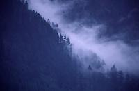 Misty mountains surround Manali.