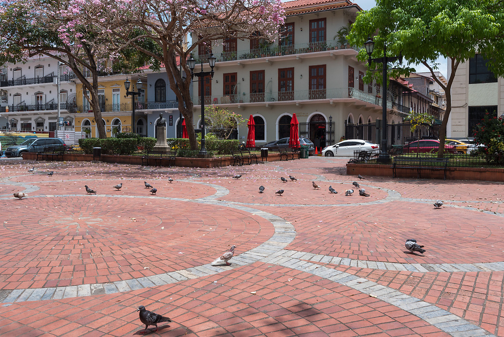 Panama City, Panama--April 19, 2018. Elegant buildings circle a town square near the Prwsidential Palace. Pigeons populate the square. Editorial use only.