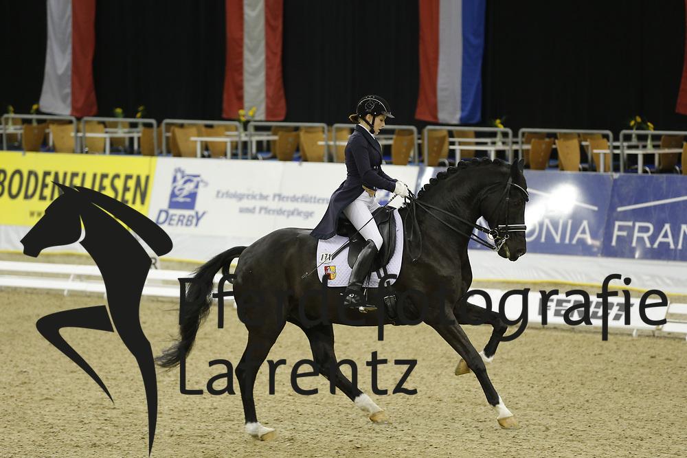 Theile, Anna-Lisa, Florenctino<br /> Oldenburg - Agravis Cup<br /> Nationale Dressur<br /> © www.sportfotos-lafrentz.de/ Stefan Lafrentz