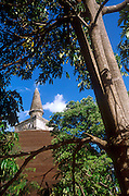 Stupa through the trees at Polonnaruwa.