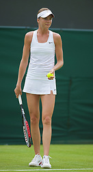 LONDON, ENGLAND - Monday, June 22, 2009: Daniela Hantuchova (SVK) during the 1st Round of the Ladies' Singles on day one of the Wimbledon Lawn Tennis Championships at the All England Lawn Tennis and Croquet Club. (Pic by David Rawcliffe/Propaganda)