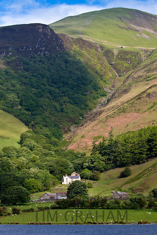 Hill farm on mountain slopes at Tal-Y-LLyn, Snowdonia, Gwynned, Wales