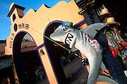 MEXICO, YUCATAN, COZUMEL San Miguel, the Villa Mar market area