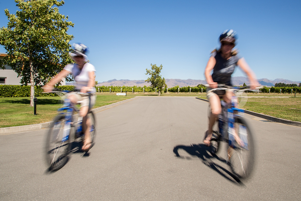 Preparing for an exciting ride through wine country, Marlborough Region, New Zealand.