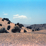 24 July 1985<br />