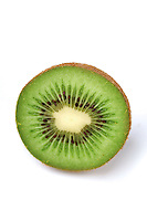 Kiwi on white background - stdio shot