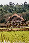 Ethnic Tay house, Vietnam