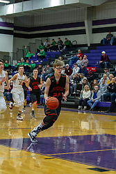 21 January 2019:1st round game of the 108th McLean County Tournament at El Paso - Gridley High School in El Paso Illinois.  Fisher Bunnies v LeRoy Panthers boys