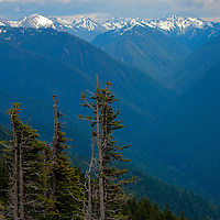 Scenic vista of Olympic Mountains - Olympic National Park, WA