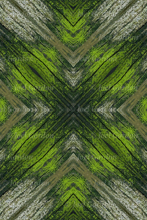 Photographic series of digital computer art, creating a  Rorschach test of abstract patterns on wooden pier pillar.<br />