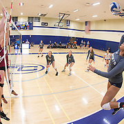 Catherine Serna rises up to hit a ball for Fullerton College in her teams 4 set loss to Saddleback College on November 4, 2016.