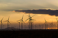 The windmill farm is seen during the sunset in Mojave Desert in Kern County, California, October 31, 2014. <br />  (Photo by Ringo Chiu/PHOTOFORMULA.com)