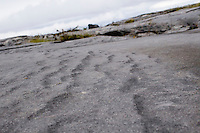 Closeup of limestone rock on Inis Oirr the Aran Islands Galway Ireland