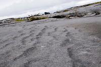 Closeup of limestone rock on Inis Oirr the Aran Islands Galway Ireland