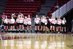 NORMAL, IL - February 10:  Redbird Redline Dancers during a college women's basketball Play4Kay game between the ISU Redbirds and the Indiana State Sycamores on February 10 2019 at Redbird Arena in Normal, IL. (Photo by Alan Look)