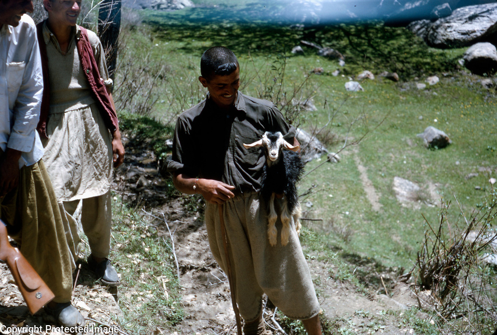 Late Summer? 1965 <br />