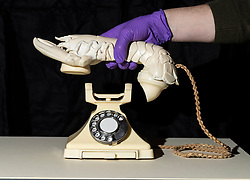 One of the most famous of all twentieth-century sculptures, Salvador Dal&iacute;&rsquo;s Lobster Telephone (1938) has been acquired by the National Galleries of Scotland, and is set to go on display this week at the Scottish National Gallery of Modern Art.<br /> <br /> This iconic sculpture is one of the most instantly recognisable masterpieces of Surrealism, the art movement that emerged in Paris in the 1920s, which explored the world of dreams and the subconscious mind. It consists of an ordinary, working telephone, upon which rests a plaster lobster, specially made to fit directly over the receiver.<br /> <br /> Lobster Telephone was acquired for the sum of &pound;853,000, supported by the Henry and Sula Walton Fund (&pound;753,000), and Art Fund (&pound;100,000). Henry Walton was a Professor of Psychiatry at the University of Edinburgh and Sula Walton (n&eacute;e Wolff) was an internationally renowned child psychiatrist. They were passionate devotees of the arts and left their art collection to the National Galleries of Scotland. They also established an independent, charitable fund, designed to help the Galleries acquire major works of modern art.