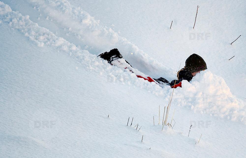 Noorwegen Robru Gol 24 december 2008 20081224 Foto: David Rozing .Wintertafereel, sleeen en met de neus in de sneeuw.Wintertime, sledge ..Foto: David Rozing