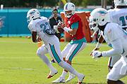 Miami Dolphins quarterback Ryan Fitzpatrick (14) prepares to pass the ball during Minicamp at the Baptist Health Training Facility at Nova Southeastern University, Tuesday, August 6, 2019, in Davie, Fla. (Kim Hukari/Image of Sport)