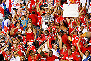 July 18 2009: Panama fans celebrate after a goal during the game between USA and Panama. The United States defeated Panama 2-1 in added extra time in a CONCACAF Gold Cup quarter-final match at Lincoln Financial Field in Philadelphia, Pennsylvania.