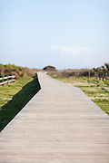 Boardwalk to the beach on Isle of Palms, South Carolina.