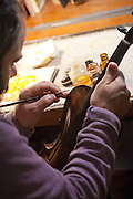 Michael Daddona, a stringed instrument maker at work in Francis Morris' Studio in Great Barrington, MA.
