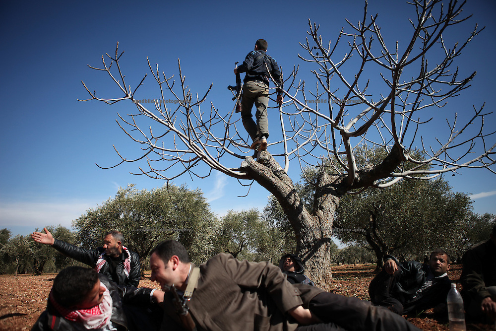 A soldier of the Free Syrian Army climb a tree to get better view to his village under heavy shelling. On 22. February the syrian army attacked the village of Kureen, Province of Idlib, Syria. Kureen was among the first villages in the northwest of Syria controlled by the opposition. Some villagers and members of the defence units escaped to surrounding olive orchards, when the attack begun in the early morning. A majority of the inhabitants didn´t manage to escape. The heavy shelling lasts 7 houres. Soldiers searched all houses, burnt some of them down, loote shops, stole cars and furniture. About 60 motorcycles were burnt down. Tanks demolished several houses. 6 men were executed. One woman died as a result of an heart attack.