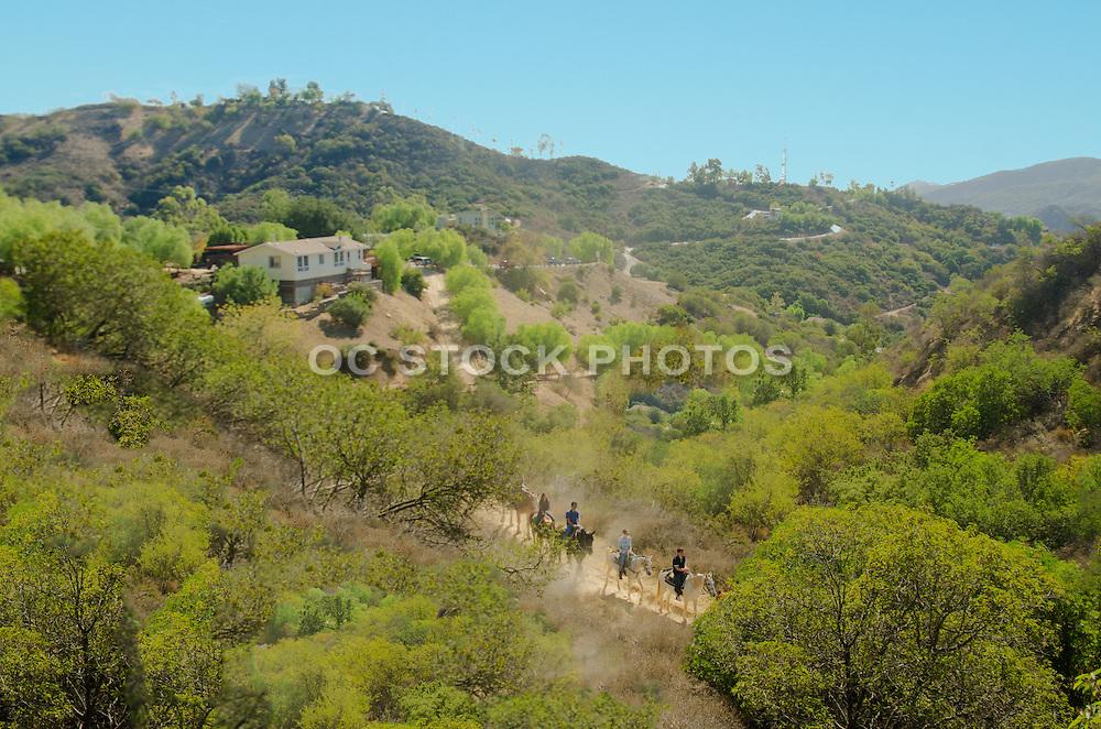 Horseback riding in Topanga Canyon