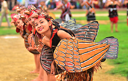August 15, 2017 - Dimapur, Nagaland, India - Chakhesang Naga performs a Chicken dance during the 70th India Independence day celebration in Dimapur, India north eastern state of Nagaland. (Credit Image: © Caisii Mao/NurPhoto via ZUMA Press)