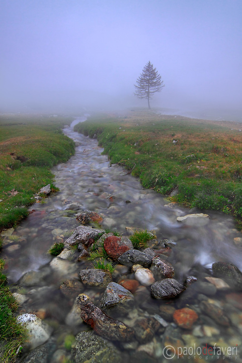 A foggy evening at Pian della casa del Re, a plateau at 2000 meters in the heart of the Alpi Marittime Natural Park in Piedmont.