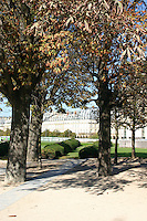 Autumn trees in Tuileries gardens Paris France<br />