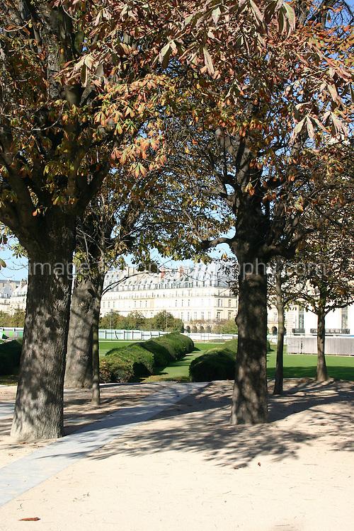 Autumn trees in Tuileries gardens Paris France<br />