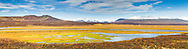 Composite panorama of lush marsh grass along a pond contrasts with the late autumn colors of the tundra in the Maclaren River Valley with the snow-covered Alaska Range in the background along the Denali Highway in Southcentral Alaska. Afternoon.