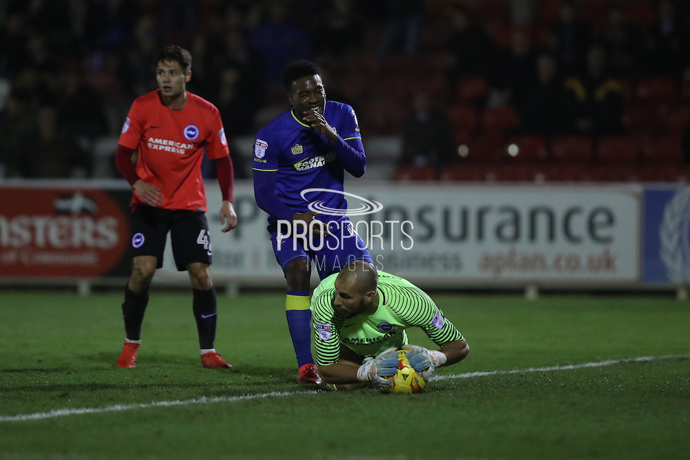 AFC Wimbledon striker Dominic Poleon (10) goes close but Brighton & Hove Albion goalkeeper Niki Maenpaa (1) saves during the EFL Trophy match between AFC Wimbledon and U23 Brighton and Hove Albion at the Cherry Red Records Stadium, Kingston, England on 6 December 2016. Photo by Stuart Butcher.