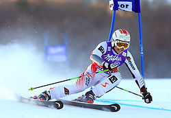 19th placed after first run Elisabeth Goergl of Austria skiing in first run of Maribor women giant slalom race of Audi FIS Ski World Cup 2008-09, in Maribor, Slovenia, on January 10, 2009. (Photo by Vid Ponikvar / Sportida)