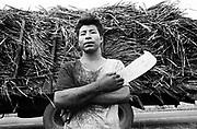 Índio guarani Kaiowá canavieiro, vítima de trabalho análogo a escravo, na usina de cana de açúcar, Naviraí, localizada no município de Naviraí - Mato Grosso do Sul, MS..Indian Guarani sugar cane Kaiowá, work victim similar to slave, in the plant of cane of sugar, Naviraí, located in the municipal district of Naviraí - Mato Grosso do Sul, MS..Índio guarani Kaiowá canavieiro, vítima de trabalho análogo a escravo, na usina de cana de açúcar, Naviraí, localizada no município de Naviraí - Mato Grosso do Sul, MS..Indian Guarani sugar cane Kaiowá, work victim similar to slave, in the plant of cane of sugar, Naviraí, located in the municipal district of Naviraí - Mato Grosso do Sul, MS.