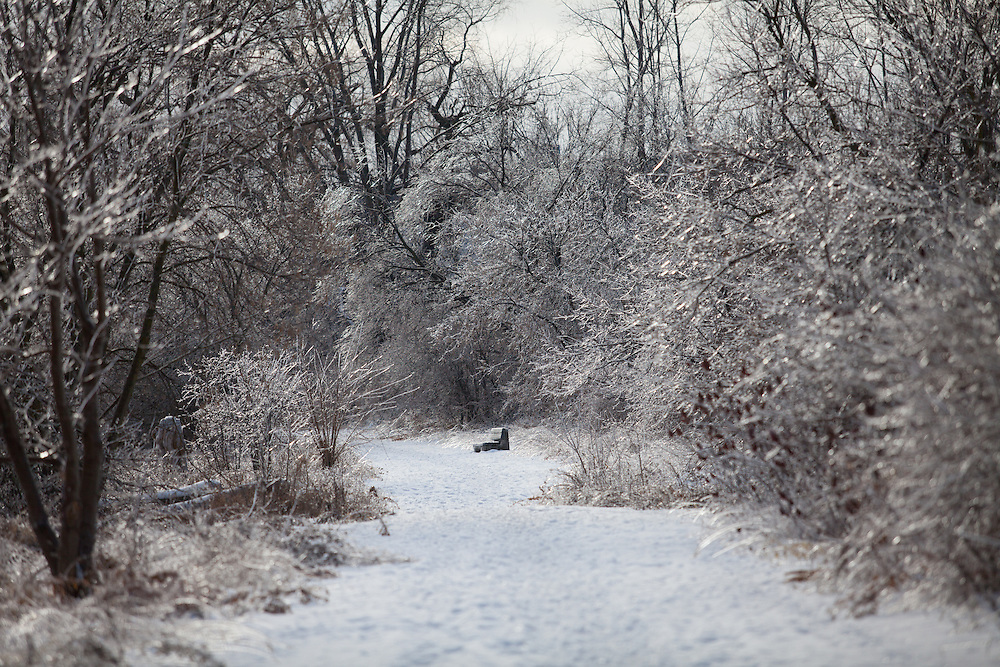 December 23, 2013 An ice storm hits Southwestern Ontario.