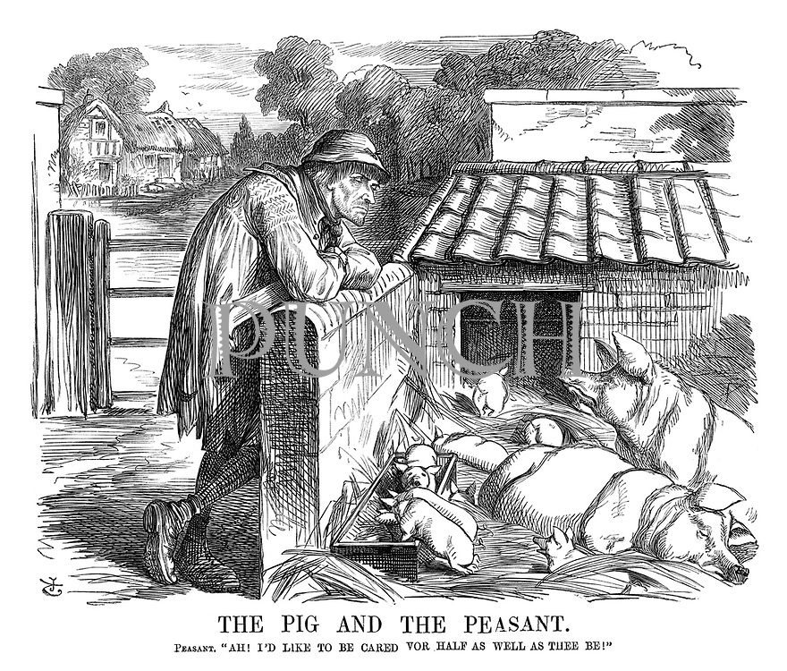 "The Pig and the Peasant. Peasant. ""Ah! I'd like to be cared vor half as well as thee be!"""