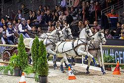 Dobrovitz Jozsef, HUN, Dreef Rezgo, Siglavy Capriola Delceg, Ikar,, Siglavy Capriola V-5 SK/B-etti<br /> Jumping International de Bordeaux 2020<br /> © Hippo Foto - Dirk Caremans<br />  08/02/2020