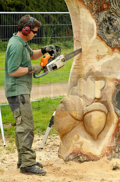"""© Licensed to London News Pictures. 25/08/2012. Westonbirt, Tetbury, Gloucestershire, UK. Carver David Lucas makes """"Knock on Wood"""", a muscial sculpture with hollowed out chambers at Treefest in Westonbirt Arboretum.  Treefest runs till 27 August.  25 August 2012..Photo credit : Simon Chapman/LNP"""