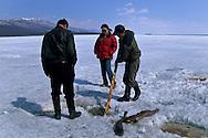 Mongolia. Hovsgul frozen lake area  Hovsgul aimak     /  au bord du lac Hovsgul.gelé.   Hovsgul province de    /