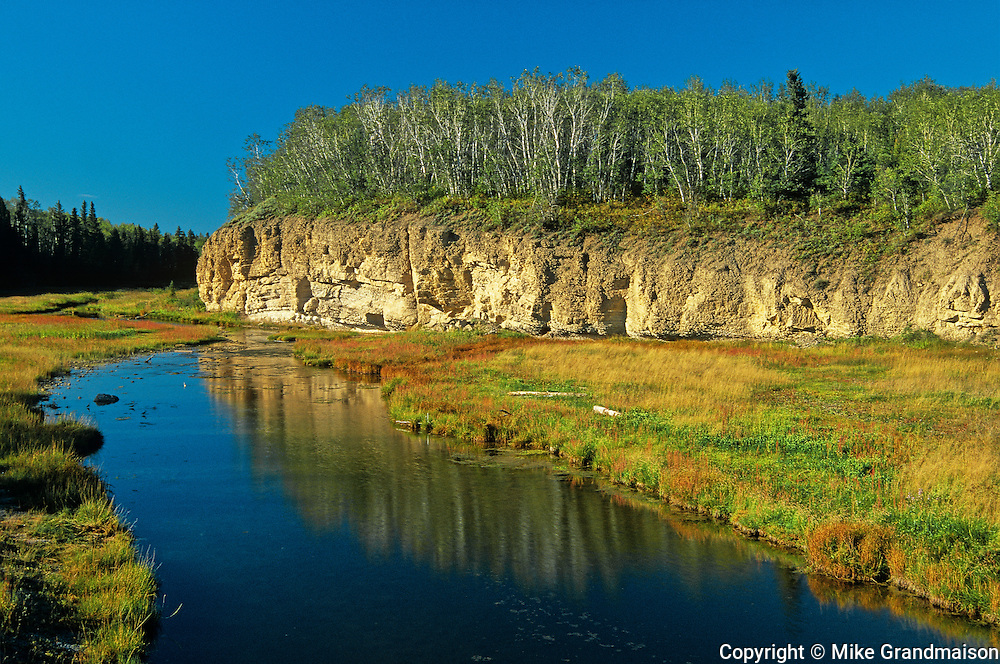 Boreal forest and boundary Creek<br /> Wood Buffalo National Park<br /> Northwest Territories<br /> Canada