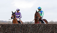 Paul John riding Echo Brava (L) seen looking over the final jump before the start of the J H Builders Novices´ Hurdleat Plumpton Racecourse - 13 Dec 2015