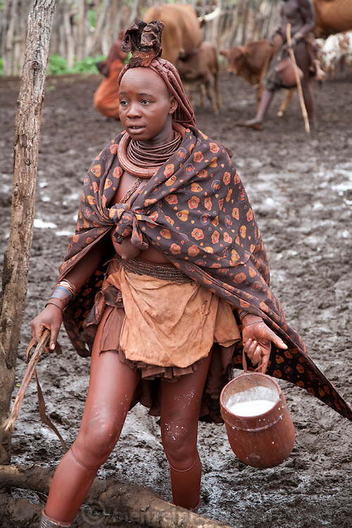 A Himba woman carries an ehoro (traditional wooden bucket) filled with milk after milking cows in a corral in the village of Okapembambu in northwestern Namibia. The Himba diet consists of corn meal porridge and sour cow's milk. During the rainy season there is plenty of grass for the animals to eat but the mud and manure of the corral are problematic.