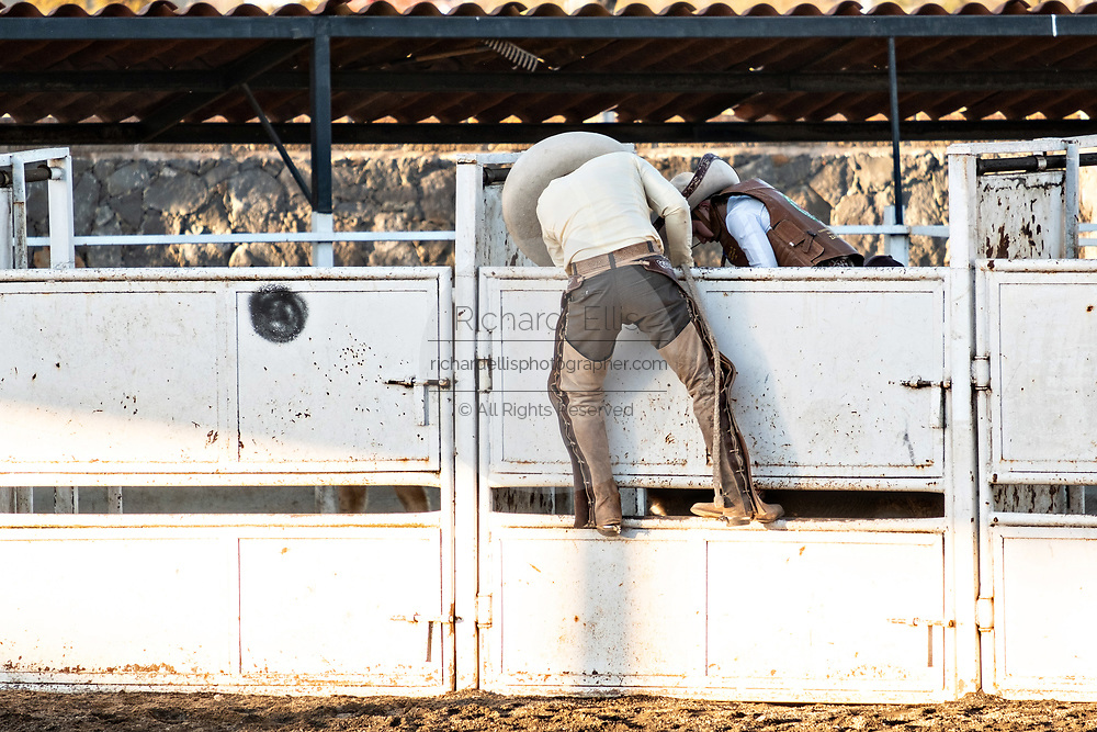Juan Franco climbs up the wall to help his son prepare to ride a bull during a family Charreria practice session in the Jalisco Highlands town of Capilla de Guadalupe, Mexico. The Franco family has dominated Mexican rodeo for 40-years and has won three national championships, five second places and five third places.